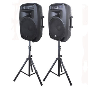 PRORECK PARTY 15 Portable PA System Combo Set